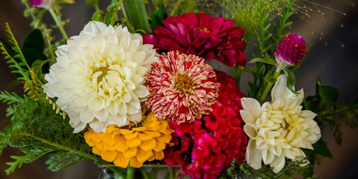 Top 10 most pleasant smelling flowers